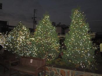 2014.12.12.JPG